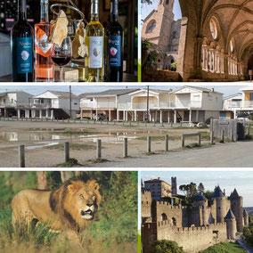 cité carcassonne, abbaye Fontfroide, gruisssan, réserve africaine de sigean, dégustation de vins audois. VTC moins cher transport UBER