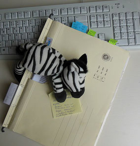 Rückrechnungen von Heiz- und Betriebskosten durch die Zebra Hausverwaltung