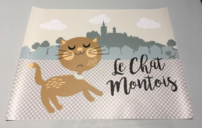 Set pour chat montois 45 X 35 cm - 12€