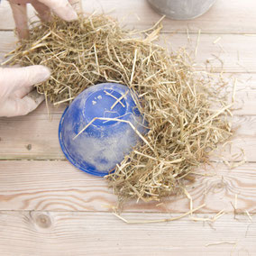 Hay around a bowl for the concrete hay Easter nest by PASiNGA