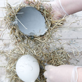 DIY PASiNGA concrete hay Easter nest bowl