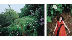 IZIMA KAORU,  341 Itaya wears Comme de Gacons, 2002, Diptychon, zwei C-Prints,, 40,8 x 50,8 cm und 32 x 22 cm, Ed.: 25 + 5 e. a. sig. und num.