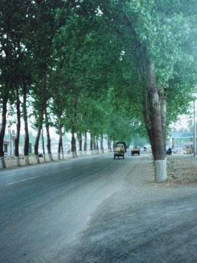 【移動】済南から上海へバスで24時間。途中の休憩所で