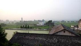 村の朝が始まった。 今日はどこに行こうかな。