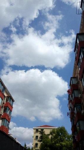 見上げた。 雲があったけど天気良かったなあ。 うちの団地。