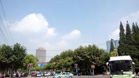 今日は久しぶりに晴れた。 今年は上海雨が多い。 自転車で移動中。 延安路×伊犁南路。