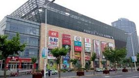 一休さん見た映画館。华谊兄弟上海电影。上海市普陀区大渡河路196号 长风景畔广场5楼(长风公园の西側)。 【聪明一休之反斗公主】音声、中国語。字幕、簡体字と英語。