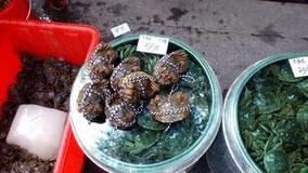 上海蟹。 今日は大きさ別に値段も書いてた。 家の前で。