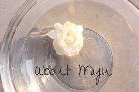 水に浮かぶ白い花