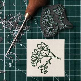 Tampon rose rubus armeniacus herbier tampon gravé main Le Héron Graveur