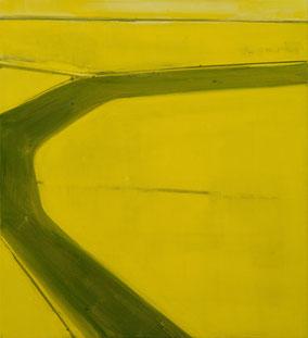 Matthieu van Riel. Schilderijen. Koolzaadveld, vogelperspectief 55x50cm flashe acryl op canvas 2021