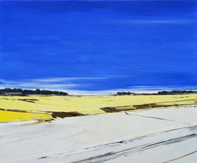 Matthieu van Riel. Schilderijen. Zonder titel 32,5x65cm acryl op canvas 2018