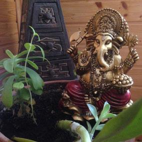 Samadhinauta: Artículos sobre cultura védica, iconografía hindú, Mandalas y más.