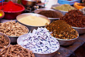 Kochseminare und Kräuterkunde