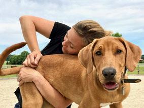 Hund Chiropraktik Wirbelsäule