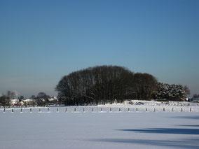 Landschap in de sneeuw met een heuvel weide. Kleurfoto.