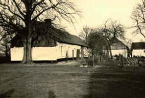 Oude boerderij op de Ulfheide-hulst. Zwart-wit foto