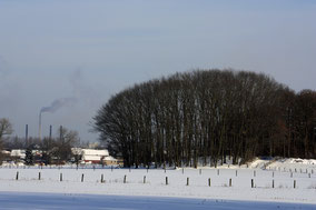 Sneeuwlandschap met een beboste heuvel en enkele huizen. Kleurfoto.