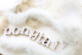 ポニーテイル Ponytail 子ども ファーストカット 美容室