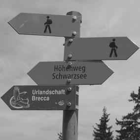 Paarberatung, Prepare/Enrich, Ehevorbereitung, Berner Oberland
