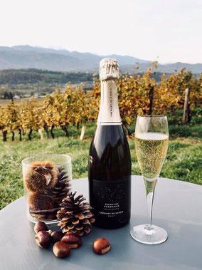 Domaine Vendange Vins de Savoie - Village étape Albertville Tour de France 2016