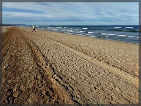 Dagmar einsam am schönen Strand!