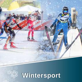 Der Wintersport-Bereich von Snow Industries  beinhaltet: Skispringen, Freestyle, Langlauf und Ski