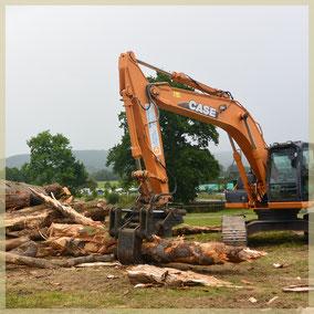 Village bois et environnement