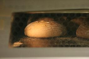 Bäckerei REST - einige unseerer Spezialitäten