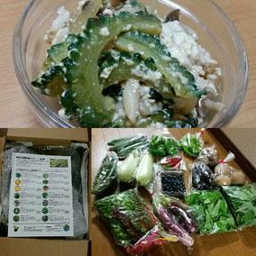 飯塚農園さんから送られてきたお野菜で、ゴーヤちゃんぷる作りました!