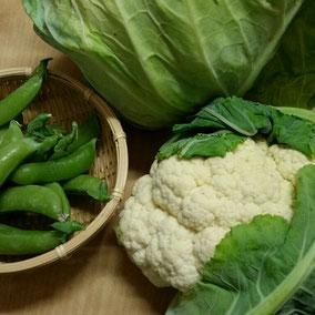 母上より、愛情たっぷり野菜便が届きました。いつもありがとう(^人^)感謝!