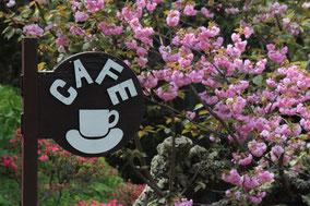 青木村郷土美術館 喫茶室