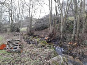 Abattage sélectif le long du ruisseau de la Fontaine aux Hérons - Pierre Loridon