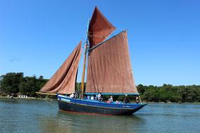 Semaine du Golfe 2017 Morbihan voiliers traditionnels