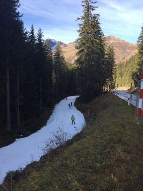 Kunstloipe Davos (Foto Christine Staub)