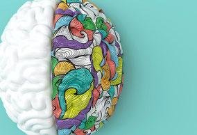 Künstlerisch dargestelltes Gehirn mit einer weißen und einer bunten Gehirnhälfte. Hirnforschung für's Coaching nutzen.