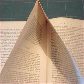 libro intonso