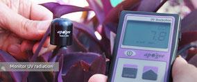 Mesure des Ultra violets - UV nécessaires aux plantes - Agralis sondes