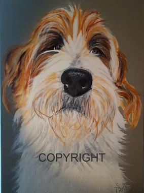 Hundeporträt