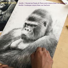 Dessin de gorille au fusain et pierre noire    la petite muse