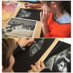 Animaux dessinés au crayon blanc sur papier noir