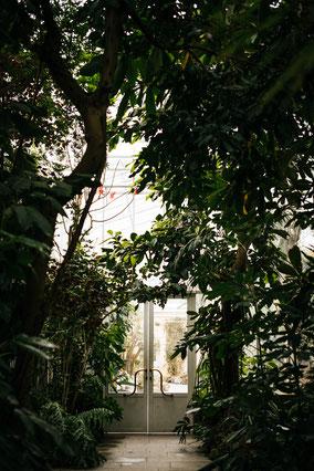 Stift und Linse, Botanischer Garten München-Nymphenburg