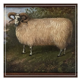 Naive portrait of a ram