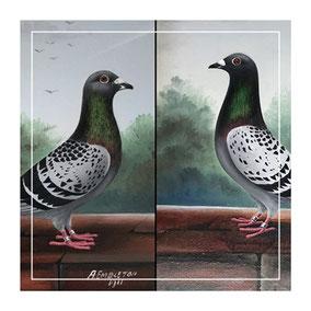 Folk art a pair of racing pigeons by Embleton
