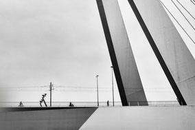 Willemsbrug Rotterdam 010