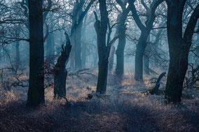 Gewitterstimmung und Regenwolken