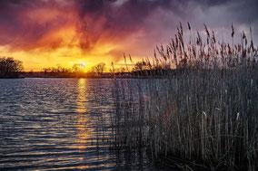 Abendrot am Kühnauer See