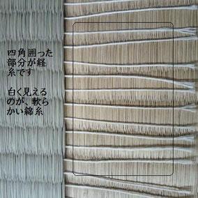 経糸使用本数 約120本 軟らかい綿糸
