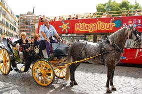 Stadtbesichtung mit der Kutsche oder per Hop-On/Hop-Off-Bus.