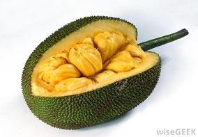 Quelle: http://www.wisegeek.org/what-is-jackfruit.htm